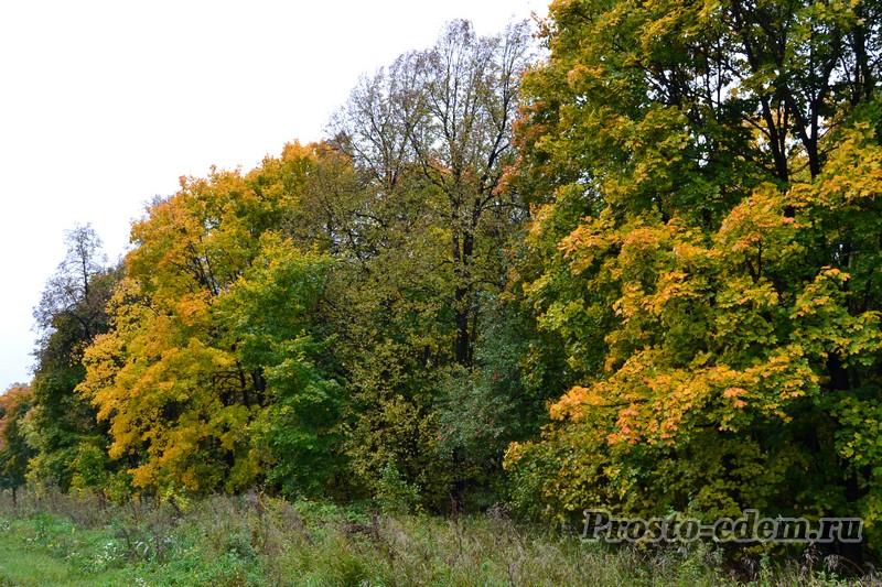 башкирия осень