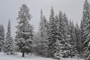 природа Башкирии зимой