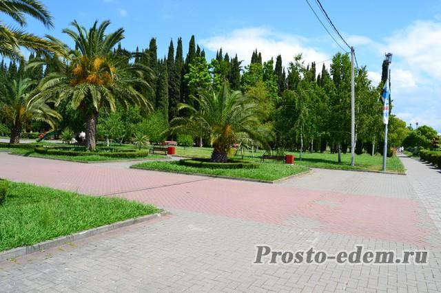 Парк в Адлере около отеля Мандарин