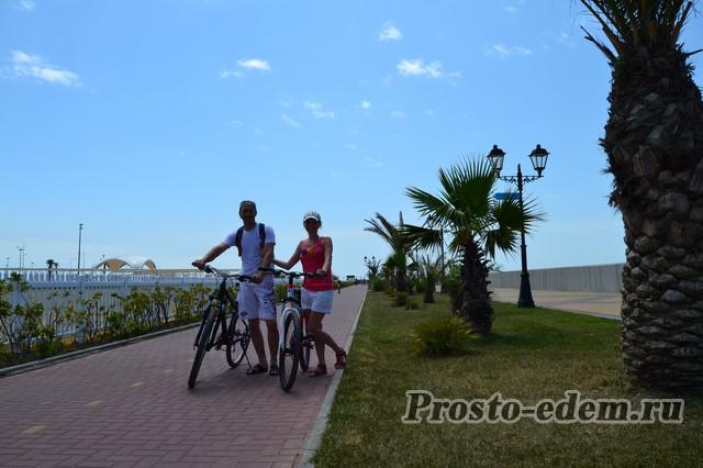 прокат велосипедов в олимпийском парке