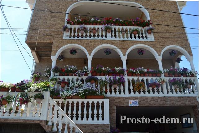 Сдается дом в цветах в Адлере