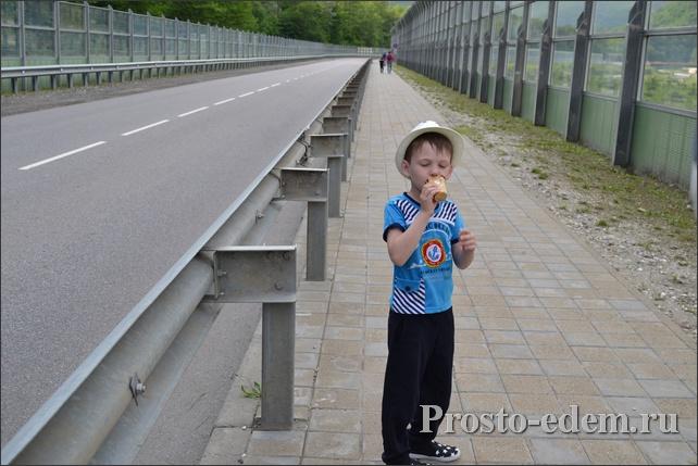 Как добраться до вольерного комплекса в Красной Поляне