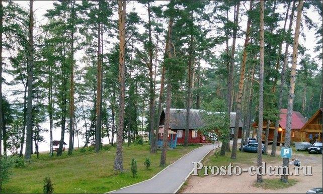 База отдыха Алалоль в Псковской области