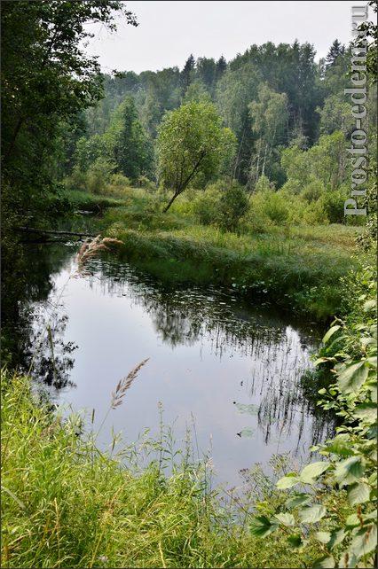 Река Волга: начало