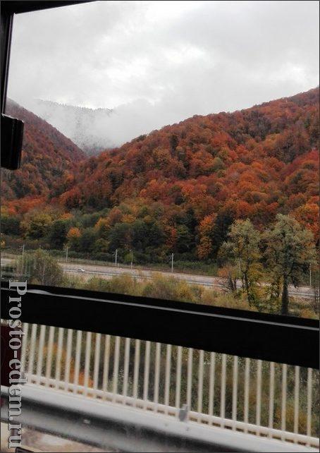 Осень в Сочи