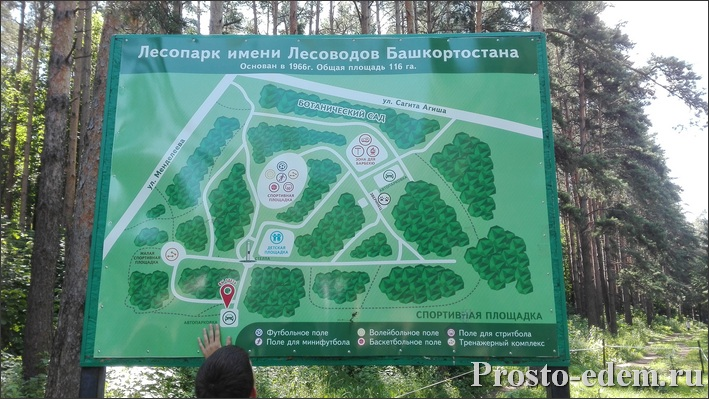 Карта Лесопарка в Уфе