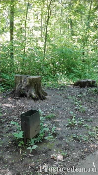 park-lesovodov-ufa16
