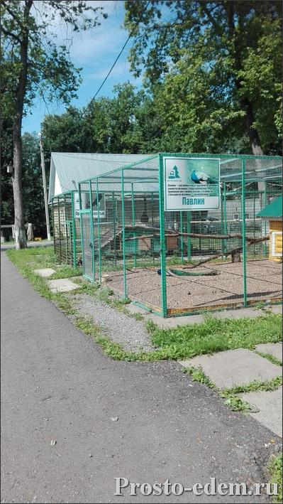 Зоопарк в парке Лесоводов Башкирии