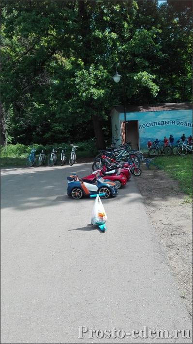 Прокат велосипедв в Лесопарке