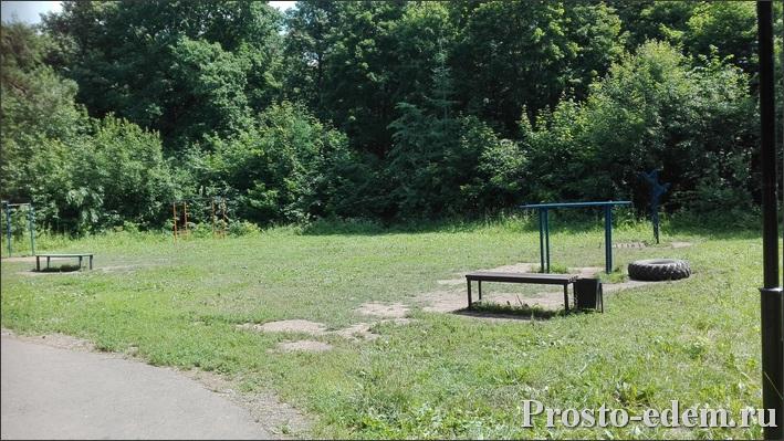 скамейки в лесопарковой зоне